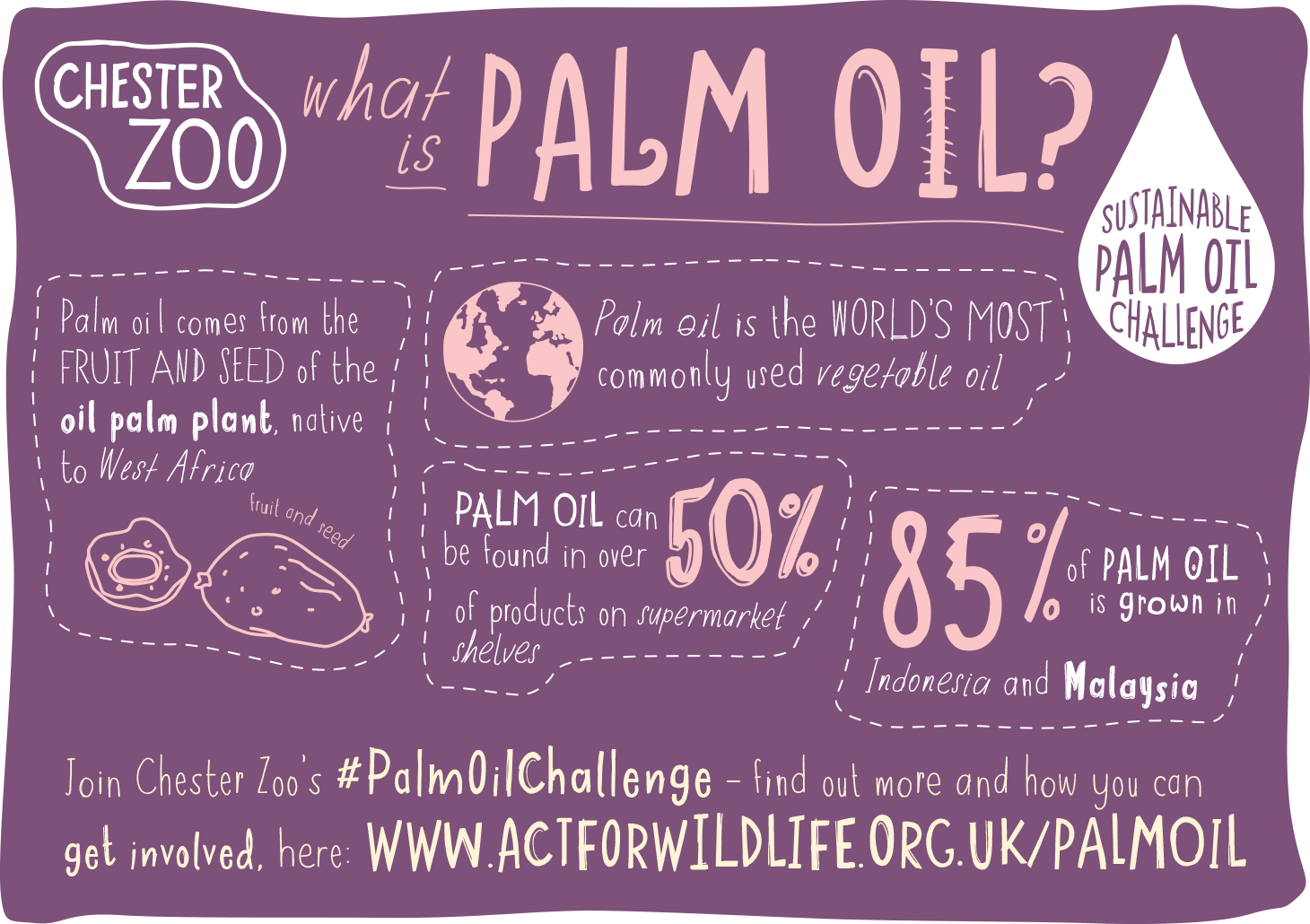 Museums and the sustainable palm oil challenge